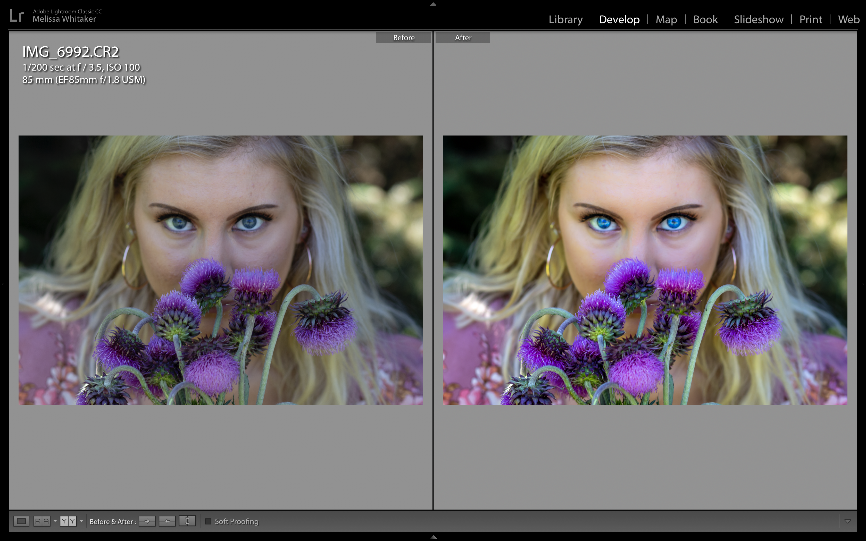 "Screenshot of ""Bravery"" Before and After Lightroom/Photoshop processing"